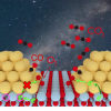 The collaboration of Wei group and Angerhofer group published in JACS